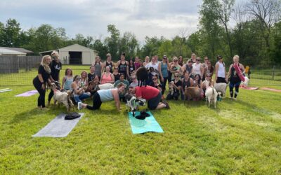 Goat Yoga Classes for all Ages